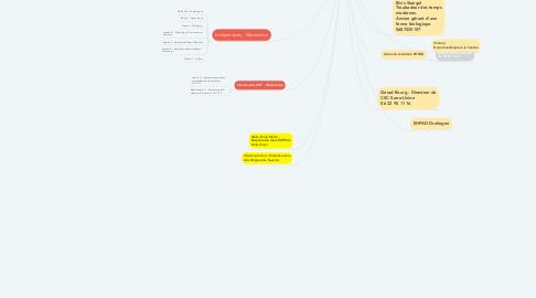 Mind Map: Super Bien-Être