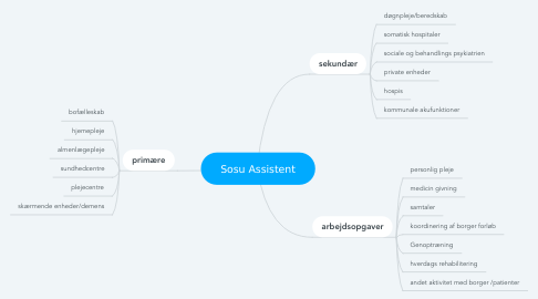 Mind Map: Sosu Assistent