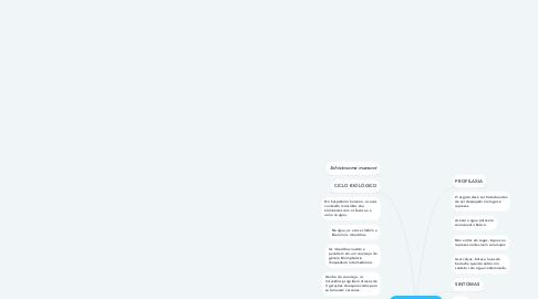 Mind Map: ESQUISTOSSOMOSE