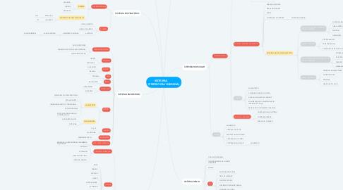Mind Map: SISTEMAS        (FISIOLOGIA HUMANA)
