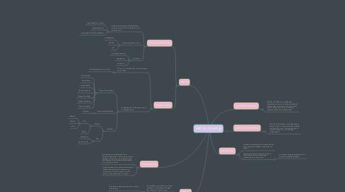 Mind Map: ARE´PA LLEVAR