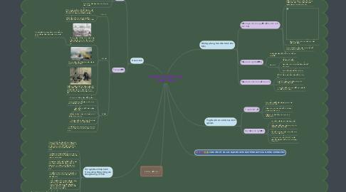 Mind Map: PHONG TRÀO DÂN CHỦ  1936 - 1939