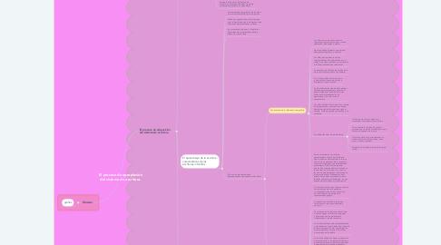 Mind Map: El proceso de apropiación del sistema de escritura.