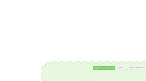 Mind Map: Piel