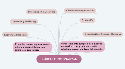 Mind Map: ÁREAS FUNCIONALES