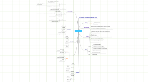 Mind Map: Tronçonneuse