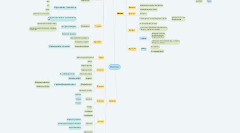 Mind Map: Glándulas