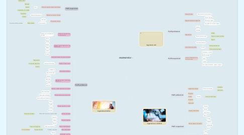Mind Map: INGENIERÍAS