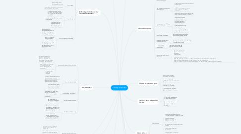 Mind Map: Gmina Wieliczka