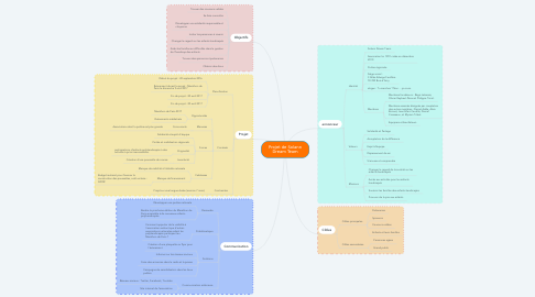 Mind Map: Projet de Solann Dream Team