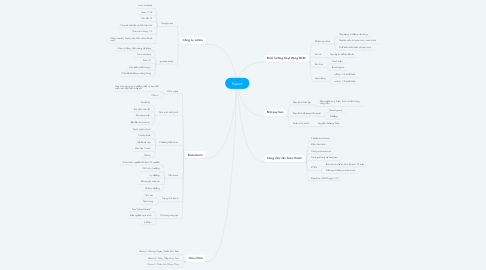 Mind Map: Report