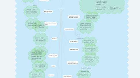 Mind Map: La Producción Sonora