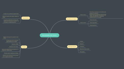 Mind Map: Necesidades del cliente.