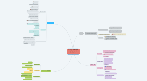 Mind Map: VIOLENCIA BASADA EN GÉNERO -VBG- EN SITUACIONES DE EMERGENCIA
