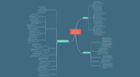 Mind Map: My Context: Through the Lens of the Primary Student Support Department