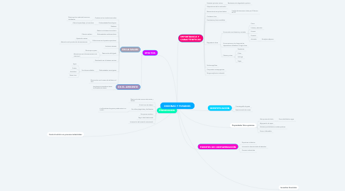 Mind Map: DIOXINAS Y FURANOS