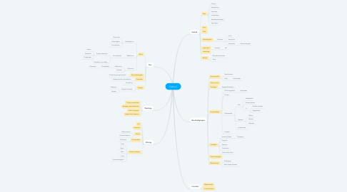 Mind Map: Gehoor