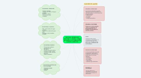 Mind Map: PROTOCOLO ADICIONAL II