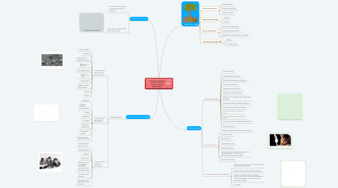 Mind Map: VIOLENCIA BASADA EN  GÉNERO (VBG) EN SITUACIONES DE EMERGENCIA