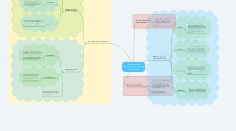 Mind Map: La Stabilité de la Température Corporelle chez l'Homme
