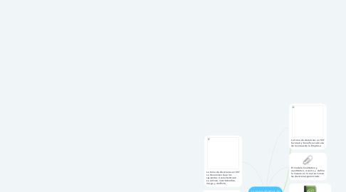 Mind Map: La toma objetiva de decisiones en SST