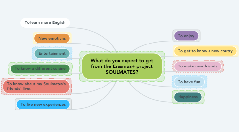Mind Map: What do you expect to get from the Erasmus+ project SOULMATES?