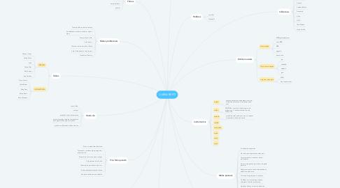 Mind Map: LUANA BERTI