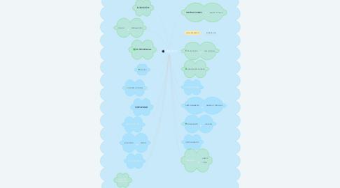 Mind Map: MACROS