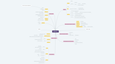 Mind Map: MEIOSIS (1)