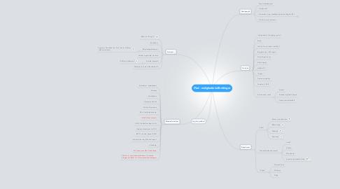 Mind Map: iPad - muligheder/udfordringer