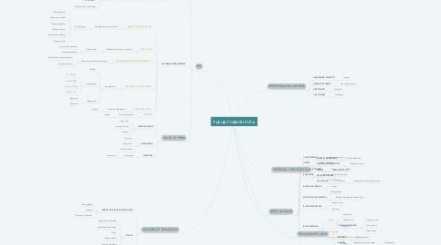 Mind Map: PLE LECTOESCRITURA