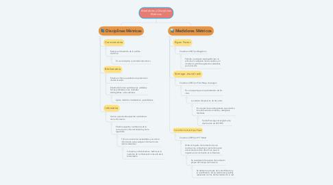 Mind Map: Medidores y Disciplinas Métricos