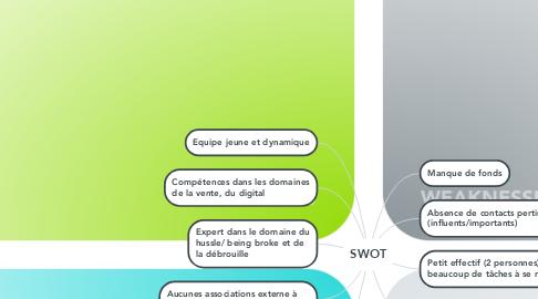 Mind Map: SWOT