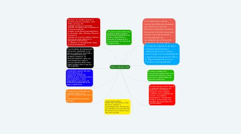 Mind Map: Sistema educativo militar
