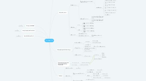 Mind Map: Thu nhập TVV