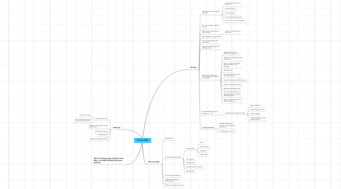 Mind Map: Plan for 2009
