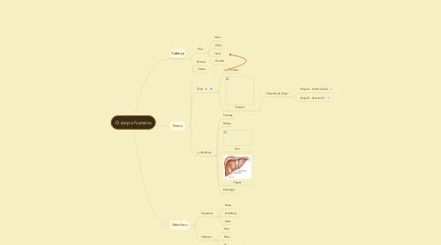 Mind Map: O corpo humano