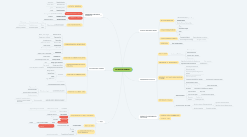 Mind Map: EL SECTOR PRIMARI