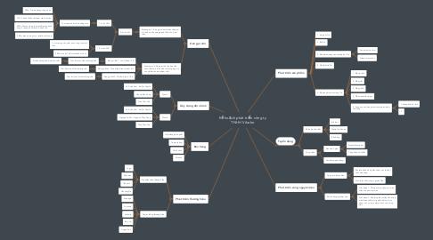 Mind Map: Kế hoạch phát triển công ty TNHH Vibabo