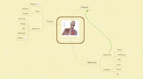 Mind Map: Corpo Humano