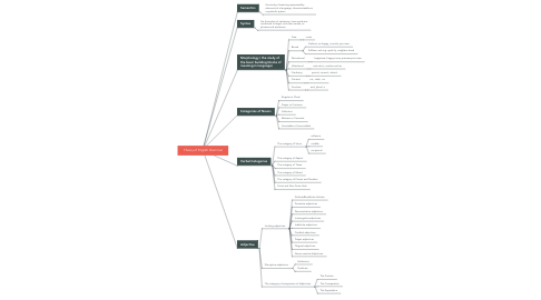 Mind Map: Theory of English Grammar