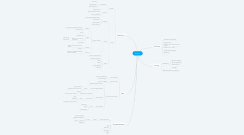 Mind Map: Fracture
