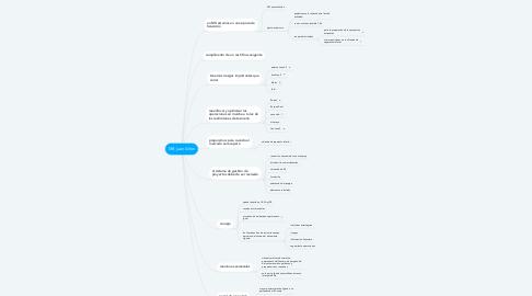 Mind Map: MX juan Añon