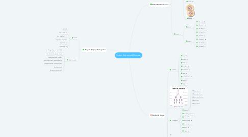 Mind Map: Sistem Reproduksi Manusia