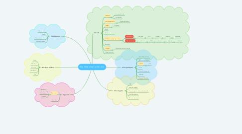 Mind Map: Site Web idéal en librairie