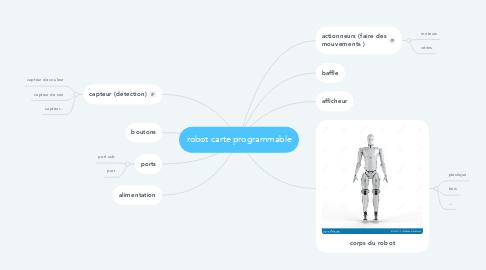 Mind Map: robot carte programmable