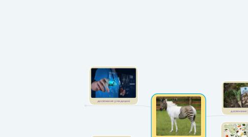 Mind Map: Застосування результатів біологічних досліджень у селекції, медицині та біотехнології