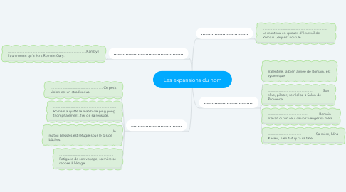 Mind Map: Les expansions du nom