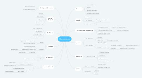 Mind Map: Champignons