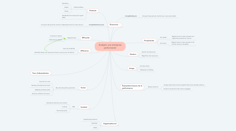 Mind Map: Analyser une entreprise performante